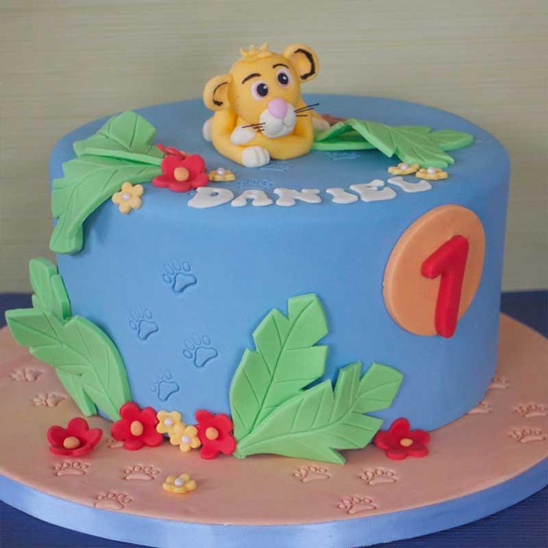 Kids-Cakes11