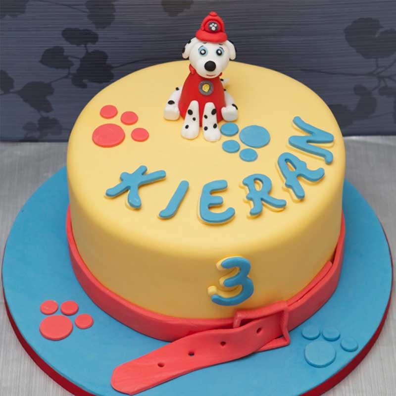 Kids-Cakes13